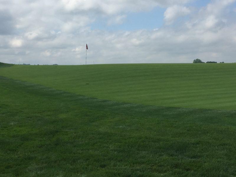 Image of false front slope at green of 2016 US Open Golf Oakmont