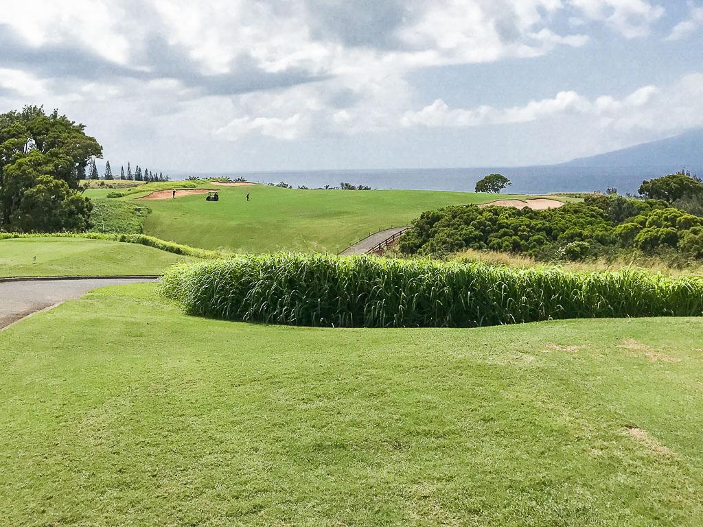 Plantation Course - Best Views on Maui   Quintessential ...