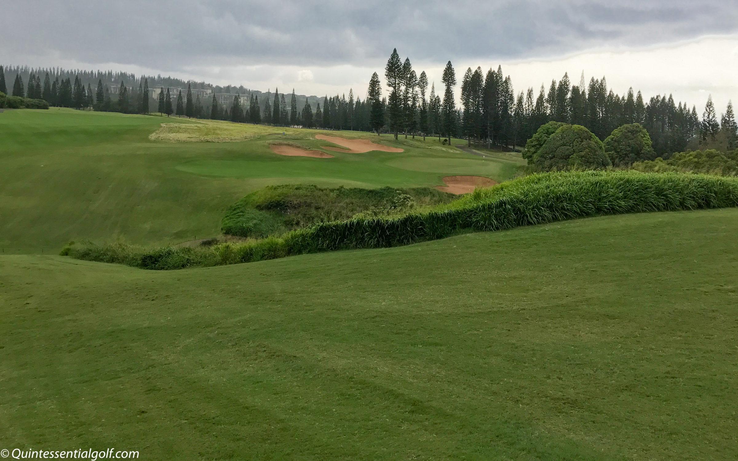 Kapalua Golf - Plantation Course   Quintessential Golf